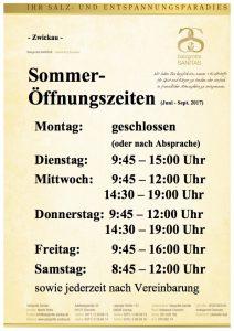 2-8b_SommerÖZ_HP-Zwickau_22.05.2017